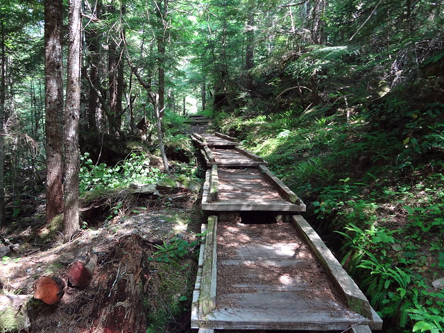 Flapjack Lakes Trail