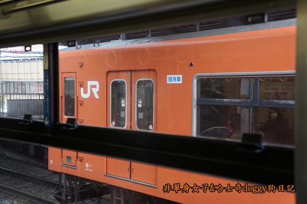 日本JR地鐵電車便當08