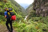 Komfort-Trekking Bolivien. Choro-Treck in den Amazonas-Dschungel.