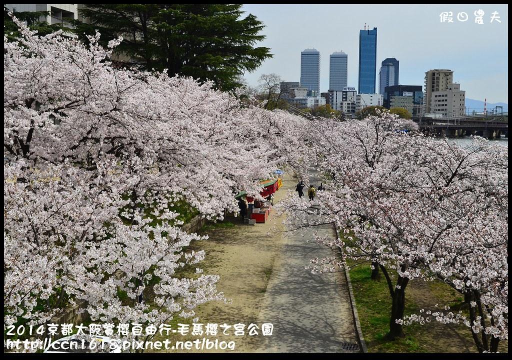2014京都大阪賞櫻自由行-毛馬櫻之宮公園DSC_1921