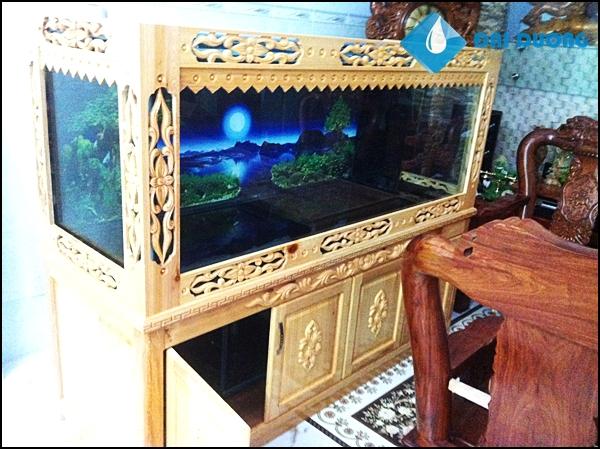 Bể cá rồng A.Tú Bạc Liêu
