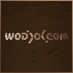 ambigram wodjol women