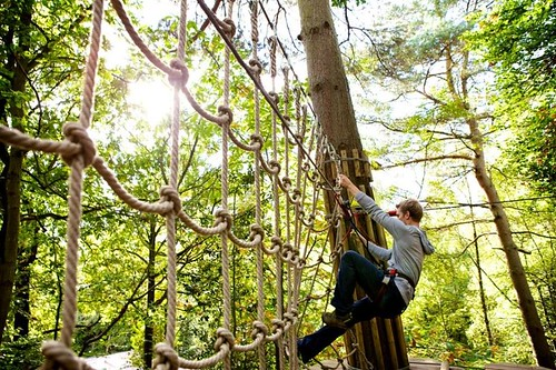 Go Ape Canopy Tour in North Raleigh