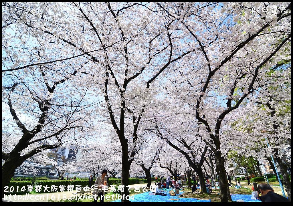 2014京都大阪賞櫻自由行-毛馬櫻之宮公園DSC_2054