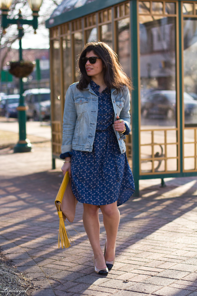 dragonfly print shirt dress, denim jacket-3.jpg