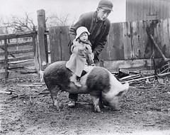 Arlington Tomlinson holding Freddie Wicks on a pig
