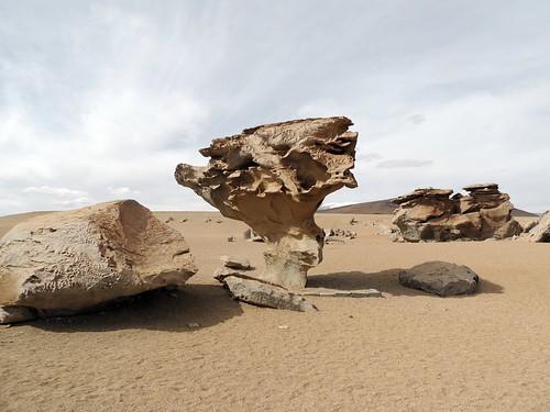 bolivia, �rbol de Piedra