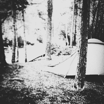 Miss camping- this was taken in Aviemore in Scotland last summer #holiday #scotland #camping #funtimes