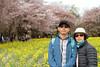 Photo:IMG_1039 国営昭和記念公園 花畑 By vicjuan
