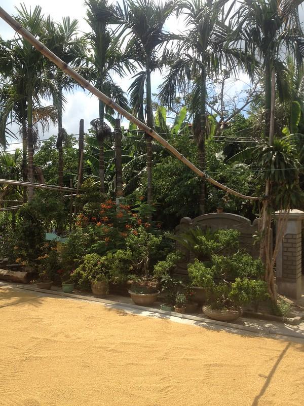 Trip to Quang Tri (42)