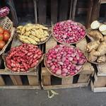 Di, 10.03.15 - 12:20 - Kartoffeln, Tomaten, Yuka