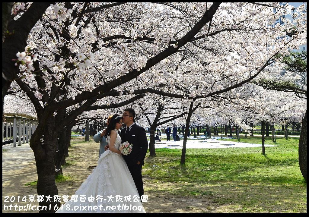 2014京都大阪賞櫻自由行-大阪城公園DSC_1682