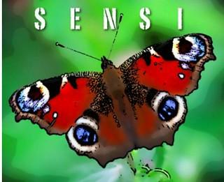 Logo Sensi