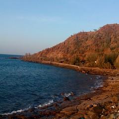 @excursionsdubai #beach #uae
