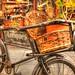 Basket & a Bike by sharona 315 사론아