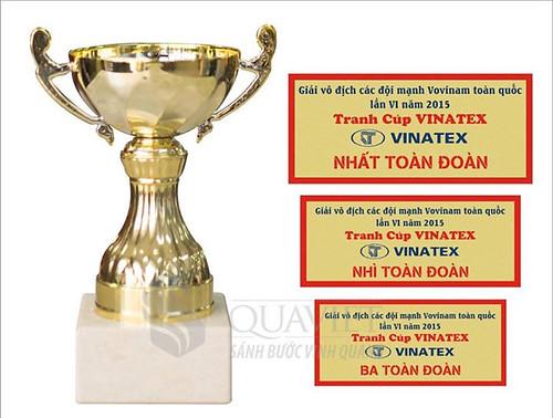 Họp chuyên môn và công bố lịch thi đấu Giải vô địch các đội mạnh Vovinam toàn quốc lần thứ VI năm 2015 tranh Cúp VINATEX