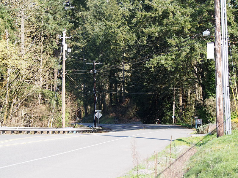Auburn–Black Diamond Road: OLYMPUS DIGITAL CAMERA