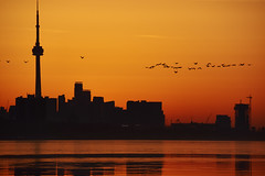 Toronto Skyline before the Sunrise
