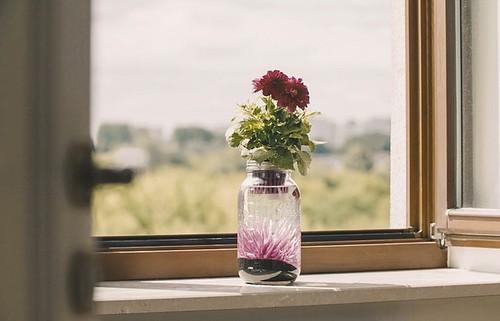 aquajar op vensterbank