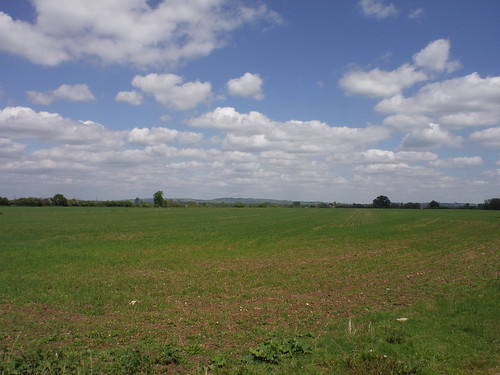 Far Views across field, Waterstock