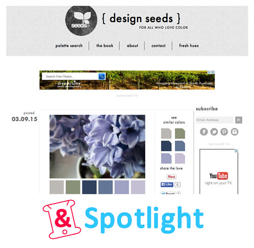 DesignSeeds-Spotlight