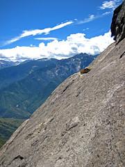alps, mountain, mountain range, summit, geology, ridge, plateau, arãªte, fell, wilderness, mountainous landforms,