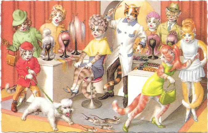 MeowMail-Salon