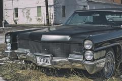 automobile, automotive exterior, cadillac, vehicle, cadillac calais, cadillac coupe de ville, classic car, vintage car, land vehicle, luxury vehicle,