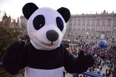 Spain_Madrid_Royal Palace_Panda_jpg_8