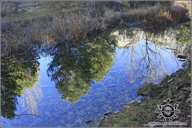 P.N. Cañón del río Lobos (Soria, España))