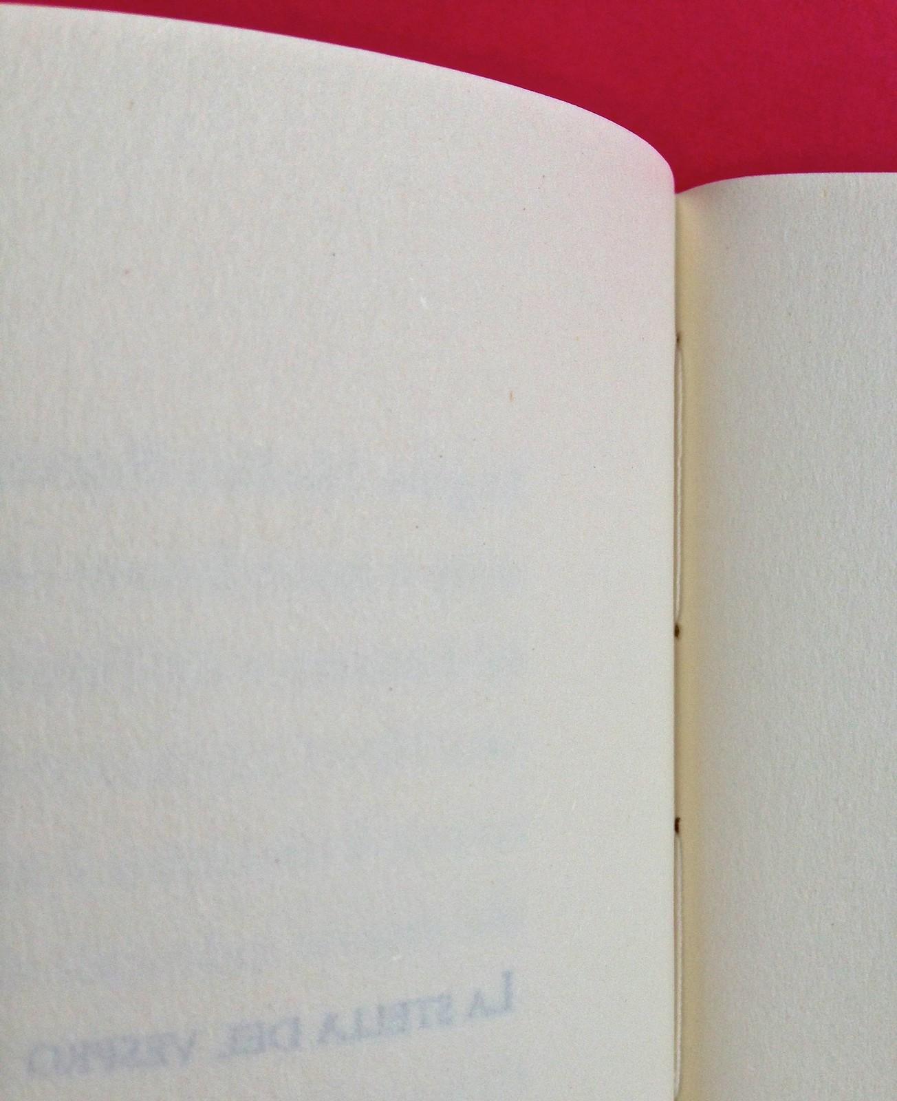 La stella del vespro, di Colette. Del Vecchio Editore 2015. Art direction, cover, illustrazioni, logo design: IFIX | Maurizio Ceccato. Fra le pag. 272 e 273 (part.), 1
