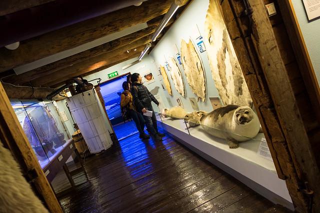 Museo Polar