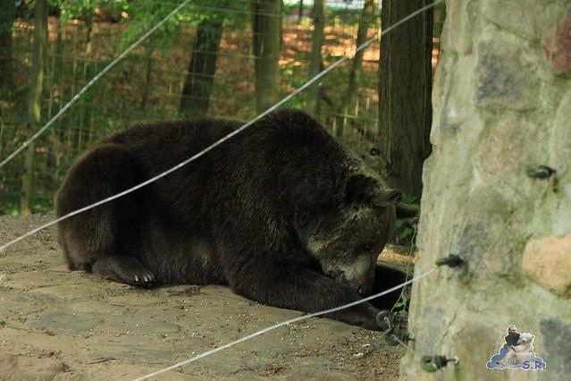 Zoo Eberswalde 04.06.2011 190