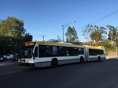 SBMTD #1003, NovaBus LFS Artic, Line 15x to UCSB/Isla Vista
