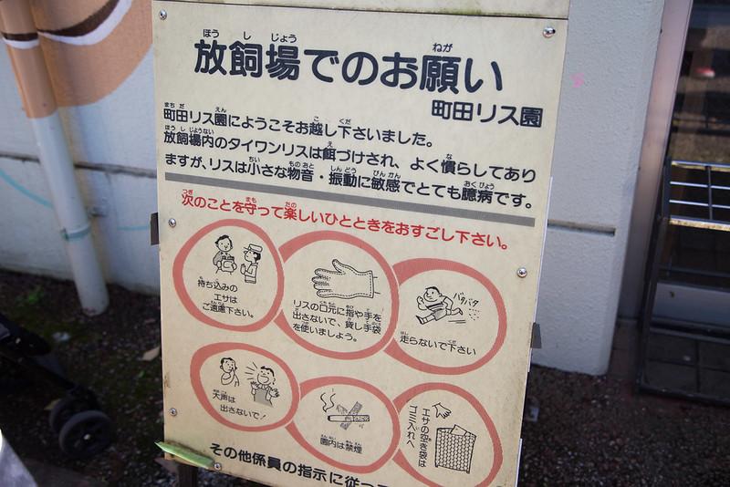 町田リス園-19