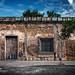 oaxaca city wall by jody9