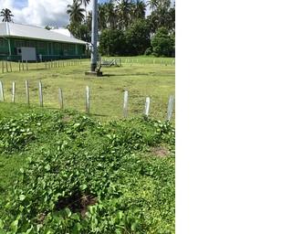 Samoa buried block