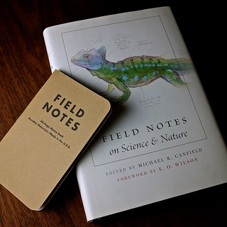 Field Notes, Too