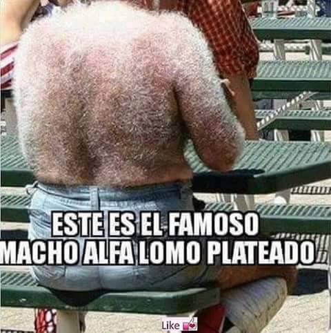 26660139553_c69559a65a_o memes en español chistosos para facebook macho alfa lomo plateado,Macho Alfa Meme