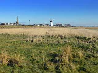 Along the overgrown shoreline at Lytham