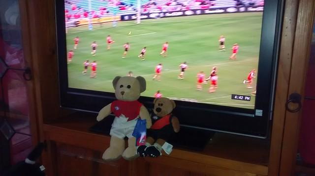 Sydney Swans v Essendon Bombers Round one 2015 bears