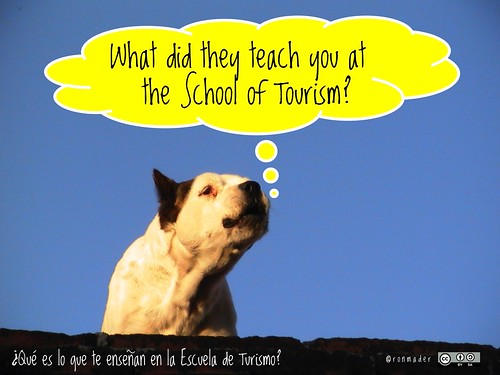 What did they teach you at the School of Tourism? @GvCyclotis @martinhatchuel  ¿Qué es lo que te enseñan en la Escuela de Turismo? #roofdog