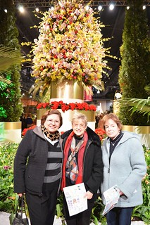 FlowerShow2015_0011-Nora Ananos, Marlene Gordon and Ellyn Vogel