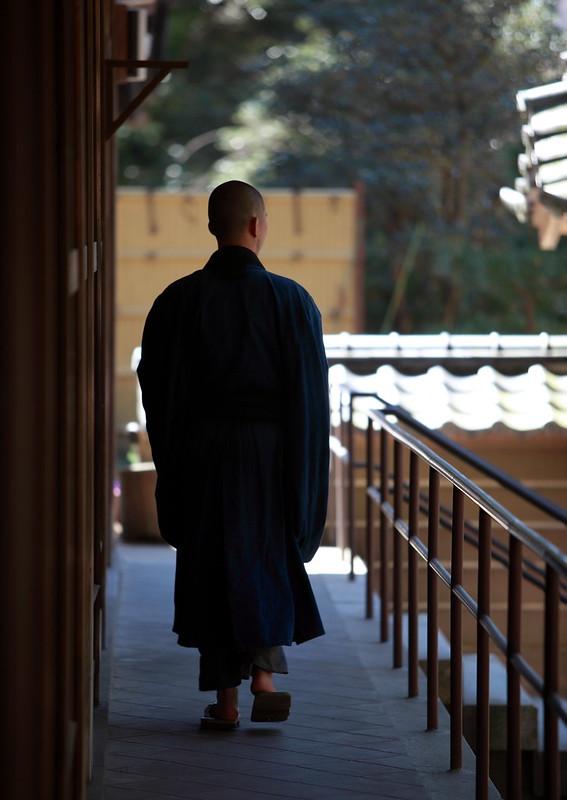 A Zen Monk In Kamakura