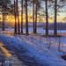 melting day by Sergey S Ponomarev