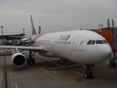 泰国航空 - naniyuutorimannen - 您说什么!