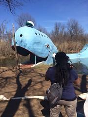 Tulsa, OK -- Blue Whale of Catoosa