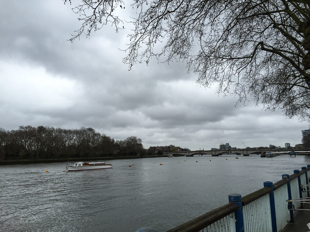 Thames before the race