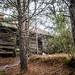 Wideman Abandoned House-004