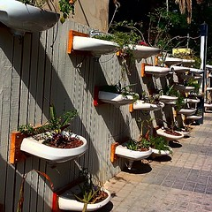 #street #art and #decoration #adliya #manama #bahrain #basins #road #food #district #plants #foliage